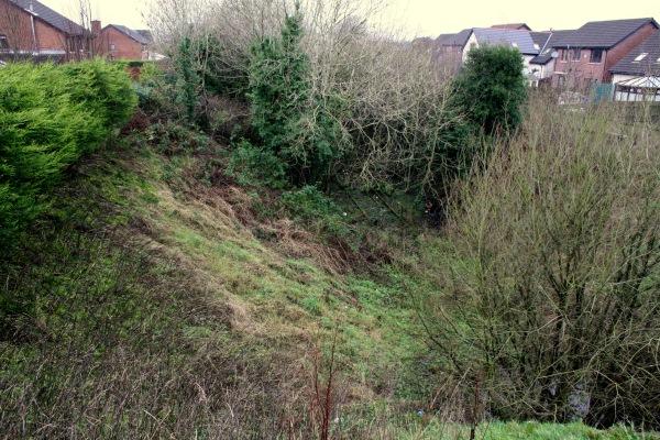View of trackbed from Burnet Avenue bridge