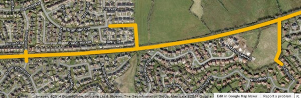 Possible access points at the outskirts of Monkstown