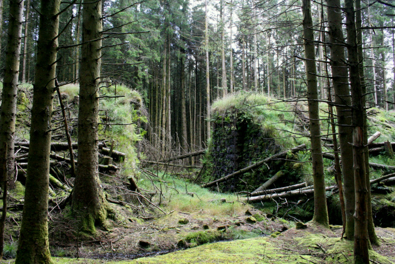 Old bridge abutments in the forest corridor